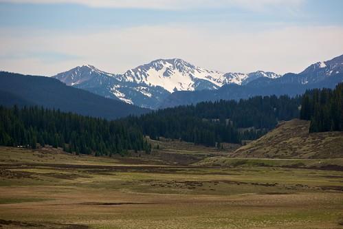 mountain snow forest vista