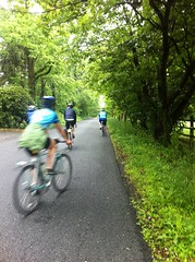 Lovely green tunnels: riding through rural New Jersey on the first day