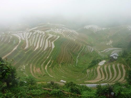 C-Guangxi-Pingan-Terrasse des 7 etoiles (30)