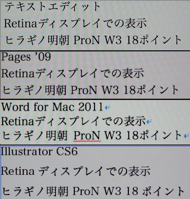 Retina 検証(テキスト)
