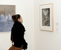 A gallery visitor contemplates Shared Vision, from The Sondra Gilman and Celso Gonzalez-Falla Collection of Photography, on view during the 2014 spring membership drive at Jule Collins Smith Museum of Fine Art, Auburn University.