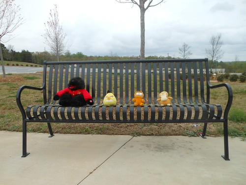 Four on a Bench (Monday)