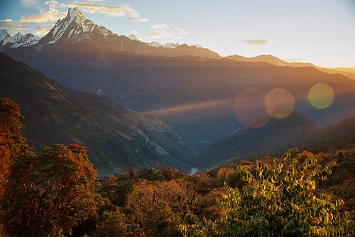 nepal annapurna himalayas annapurnatrek poonhill thehimalayas poonhilltrek trekkinginthehimalayas himalayastrekking sunriseinthehimalayas ghorepanipoonhilltrek trektopoonhill
