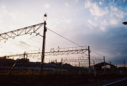 2011-1115-natura-fuji-xtra400-011