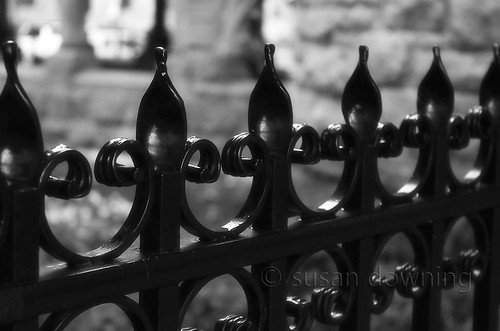 Iron Fence BW