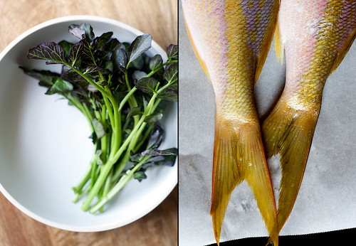 Purple Watercress & Yellowtail  Snapper