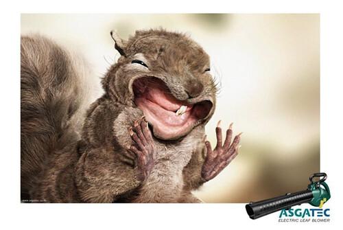 AdFest2012LeafBlowSquirrel