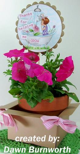 flower pot2