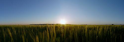 sol puestadesol lamancha díaazul