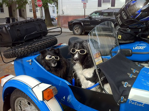 Styling with their Doggles in the Ural