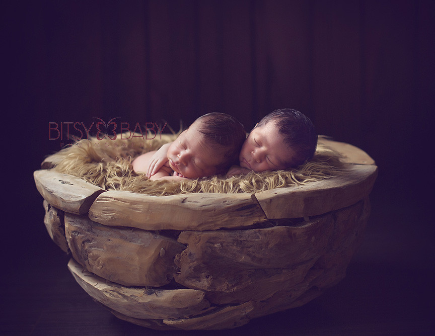 newborn twins photography MD