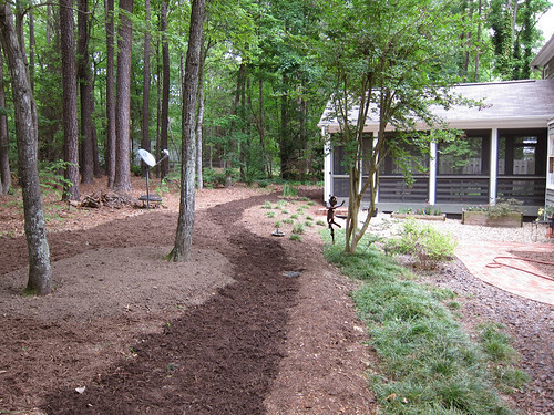 newly mulched yard!