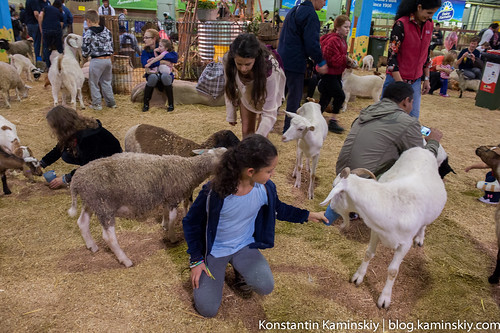 Easter show-0533