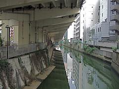 Tokyo Expressway & canal