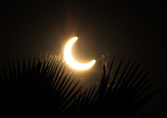 Annular Eclipse from Riverside, CA