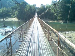 truss bridge(0.0), arch bridge(0.0), suspension bridge(1.0), canopy walkway(1.0), rope bridge(1.0), bridge(1.0), cable-stayed bridge(1.0),