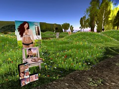 Skin Addiction Skin Showcase Sim 17