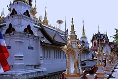 IMG_0645 Temples at San Pa Tong, วัดทึ่สันป่าตอง