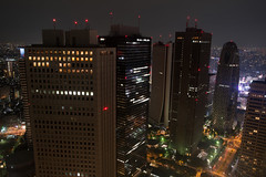 A view from Tokyo Metropolitan Government Building Observation #2