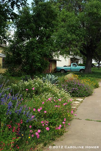 Front garden beds