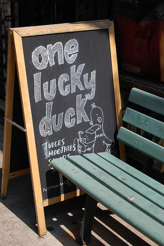 One Lucky Duck, NYC