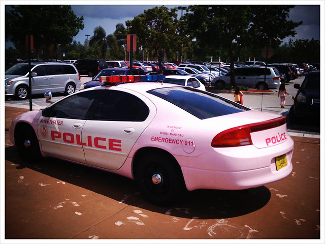 POLICE: Pink Car