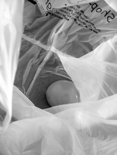 broken egg in a plastic bag
