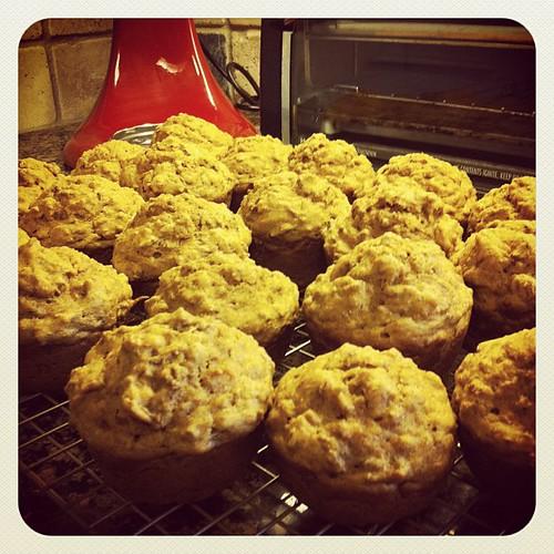 {Day 18} #somethingImade bran muffins #mayphotoaday #catchup