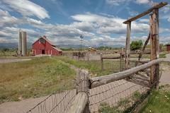 Farms, McIntosh