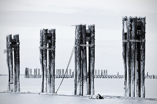 Poles by petetaylor