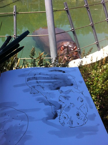 Drawing at the SF Zoo