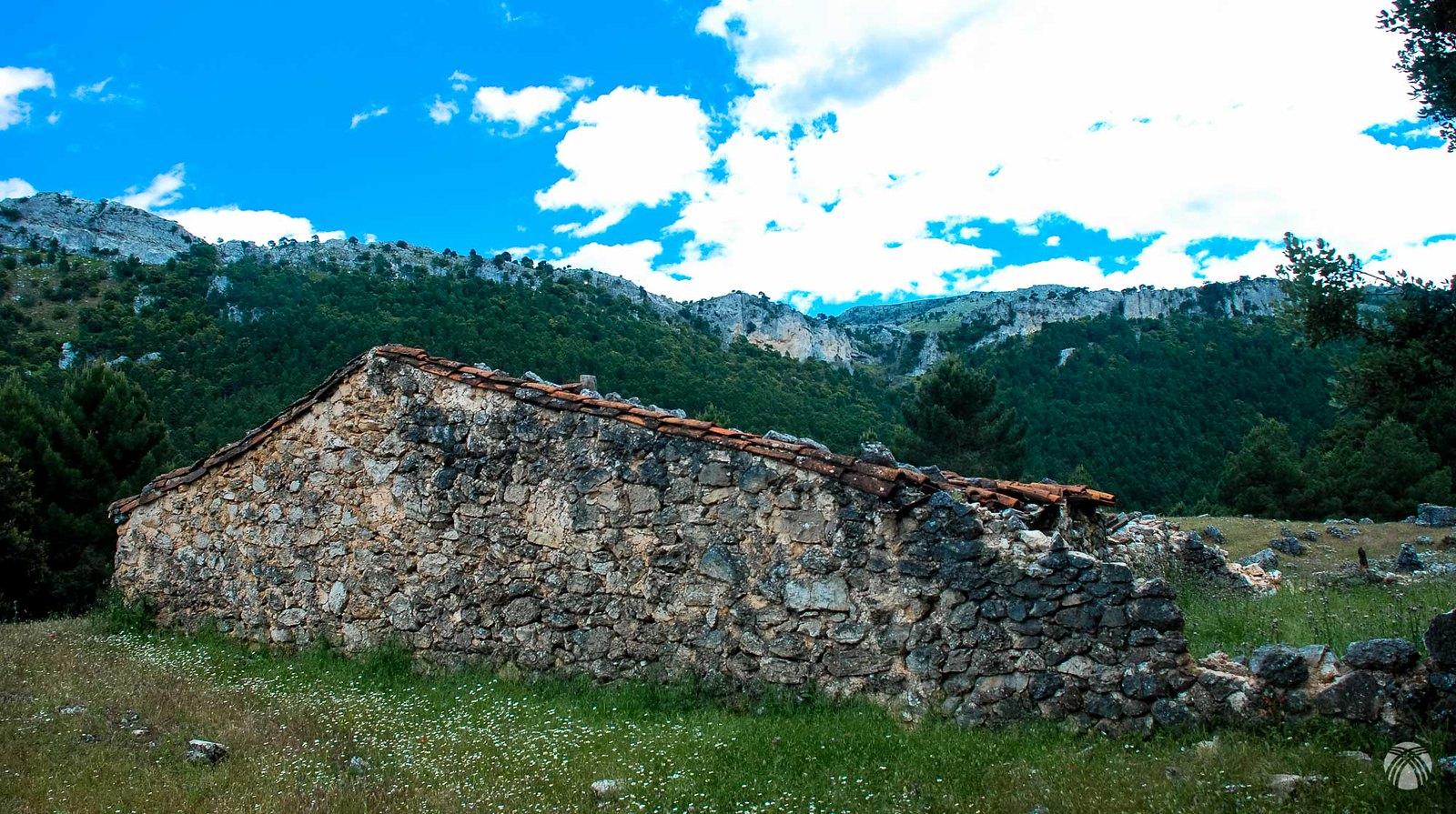 En la Cañada del Avellano