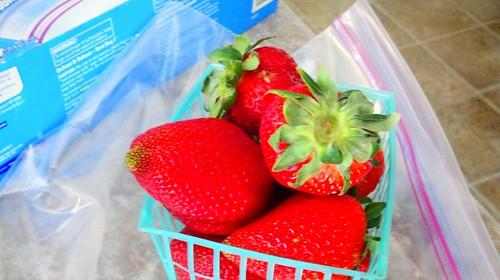 My berry haul