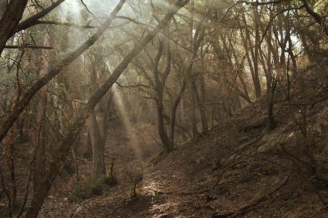 San Gabriel Mountains Wildernessorg - Us map san gabriels mountain range