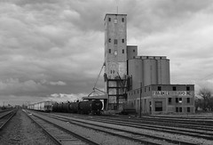 Wichita Falls Yard and grain elevator, Wichita Falls TX
