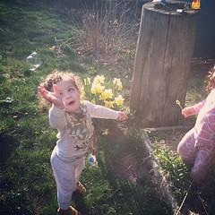 Bubbles x2