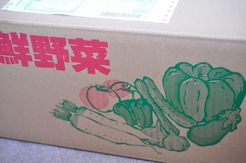 良菜健暮 熊本県 九州