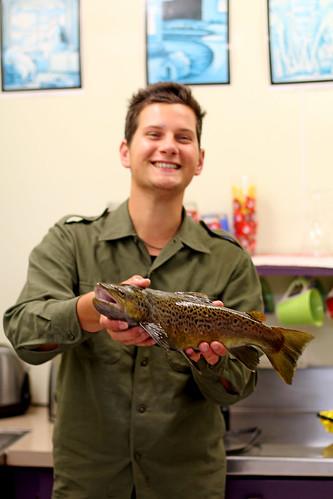 Tobi's fish