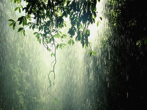 its-raining2