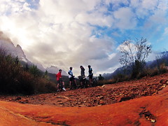 Mountainbiking in Stellingbosch