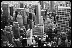Manhattan skyscreepers jungle