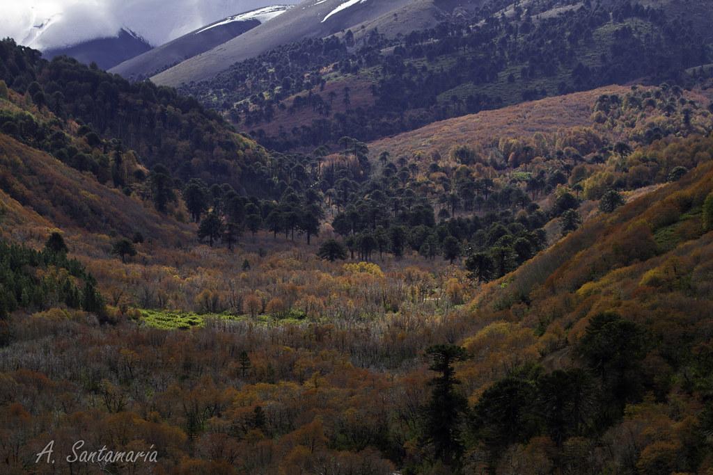 paisajes de chile