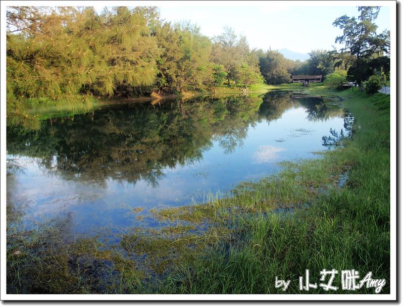 台東黑森林琵琶湖P7242415
