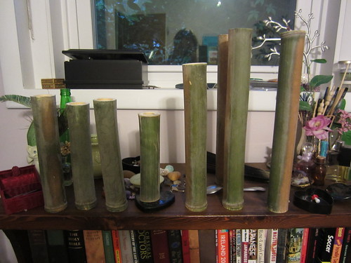 Bamboo Fun