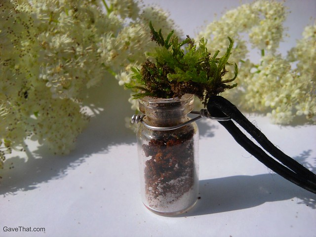 The finished do it yourself terrarium necklace