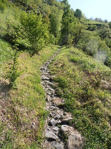 LA MATURE (chemin) 098