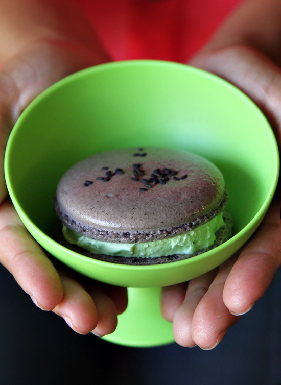 macaron icecream sandwich