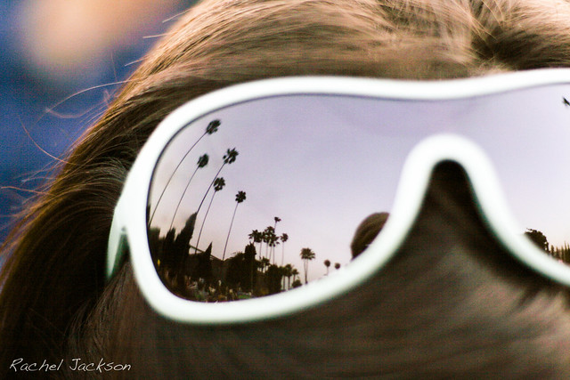sunglasses palm trees reflection