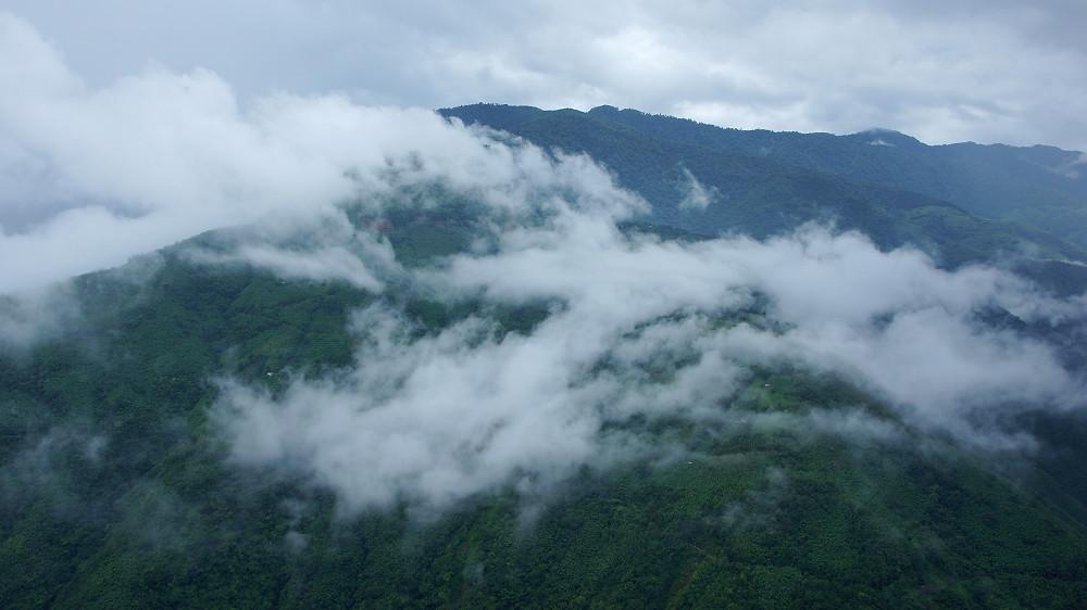 巨木群,與往拉拉山的路上-089