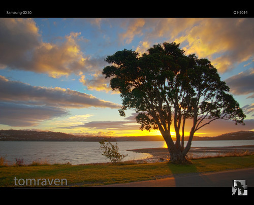 sunset sky sun tree water silhouette clouds reflections glow shadows inlet pohutakawa gx10 samsunggx10 tomraven aravenimage q12014